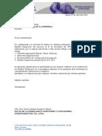 Formato Del Auditor