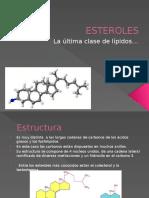 Esteroles 6.5