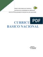 Analisis Del Curriculo Básico Nacional