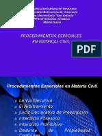 Procedimientos especiales-ultimo Trabajo resolucion judicial del conflicto
