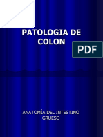 Diagnóstico Por Imagen II - Colon