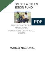 Situación de La Eib en La Region Puno