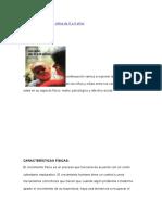 Características de los niños de 0 a 6 años.docx