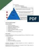 Estructura de La Pirámide de Documentos