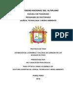 Proyecto Tesis ESTIMACIÓN Y DINÁMICA DE CARBONO