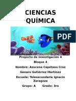 Proyecto de Genaro y Azucena (Autoguardado)