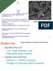 Lecture 13 - Esherichia Coli
