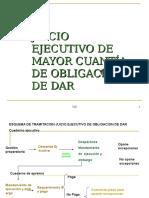 procedimiento ejecutivo (1)