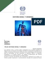 8_Sistema Renal y Urinario
