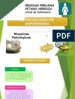 muestras patologicas1 (1)