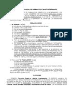Contrato de Trabajo Jorje 10-10 (Elsa)