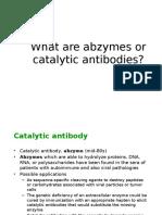 Catalytic Antibody Euniv