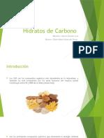 Hidratos de Carbono
