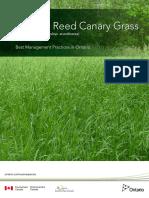 OIPC BMP ReedCanaryGrass Apr022013 D3