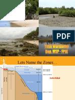 [EPP] Intertidal