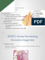 4. ANUG (Acute Necrotizing Ulcerative Gingivitis)