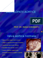 CURS 07-Valvulopatii Aortice