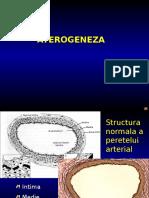 CURS 10 Aterogeneza