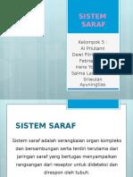 Ppt Sistem Saraf