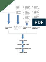 54480160-diagram-pathophysiology.docx