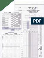 Protocolo Wisc III