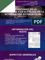 Contribuciones de Respiración y Glicólisis en La Acidificación
