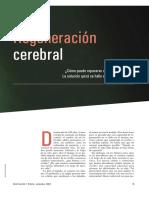 Neurogenesis (1)