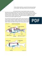 Biologi Pisces