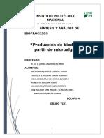 Síntesis de Bioprocesos-Final