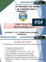 Informe Ppp II