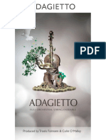 8DIO_Adagietto_Manual.pdf
