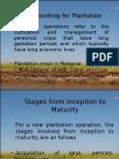 ACC 721 - Plantation