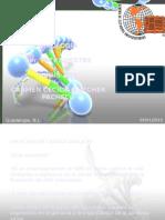 Tarea 1 Virus ARN