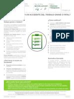 FICHA Accidentes Graves y Fatales 2015