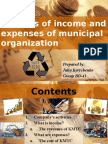Analisis of Income and Expenses of Municipal Organization