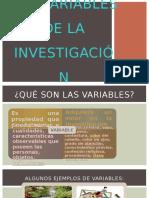 Las Variables de La Investigación