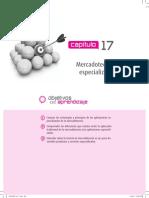 FISCHER_CH_17.pdf