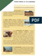 FICHA DE CIENCIA N°04 EFECTOS EN LOS ECOSISTEMAS.docx
