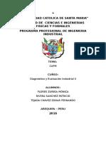 dIAGNOTISCO CAPM.docx