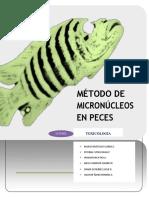 Metodo de Micronucleos en Peces