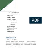 Practica 1- Sustancias Organicas