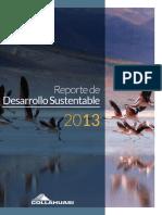 Info_sus_2013.pdf