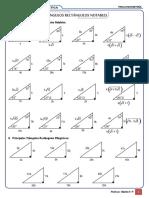 Triangulos - Identidades