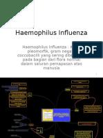 Haemophilus Influenza