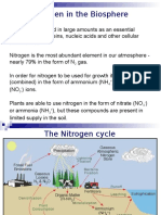 Nitrogen in the Biosphere