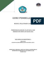 Modul Guru Pembelajar PJOK SD KK A.pdf