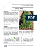 Culinary Herbs by University of Kentucky
