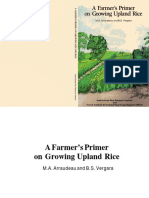 Farmers Primer in Growing Upland Rice