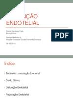 DISFUNÇÃO ENDOTELIAL.pdf