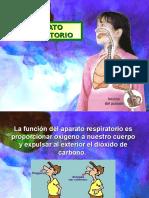 Aparato Respiratorio 52270 14860 (1)